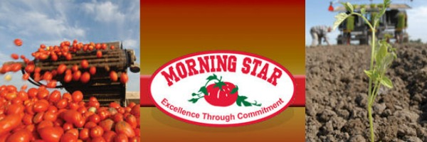 Morning Star - Manage yourself