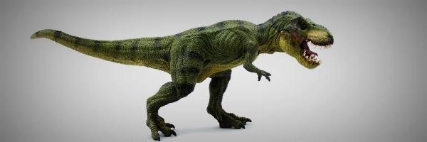 Warum die Dinosaurier ausgestorben sind...