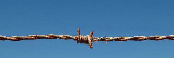 Schluss mit der kreativen Apartheid!